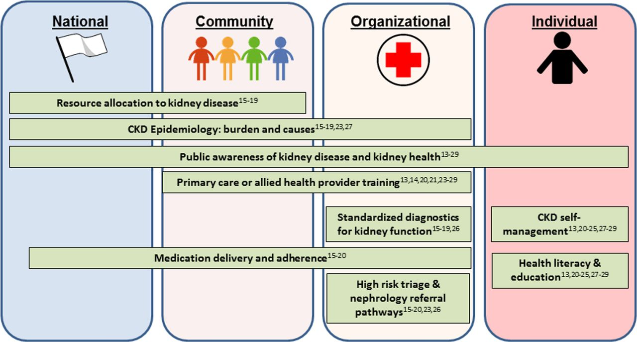 Chronic Kidney Disease Care Models In Low And Middle