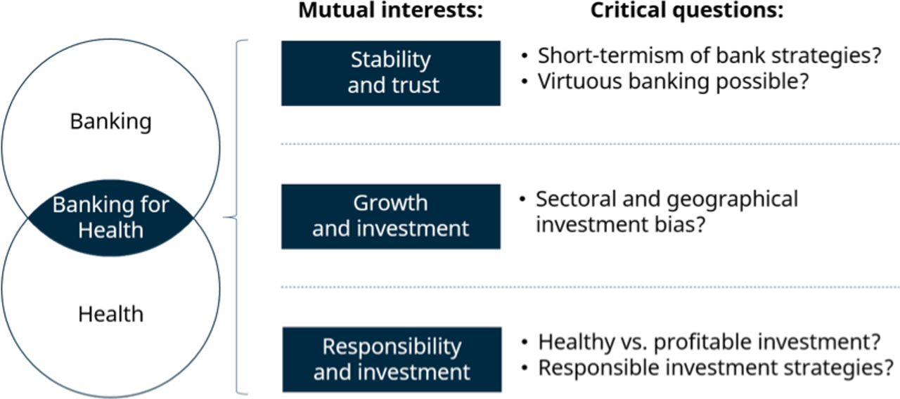 Banking for health: the role of financial sector actors in