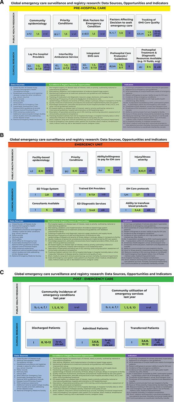 Emergency care surveillance and emergency care registries in